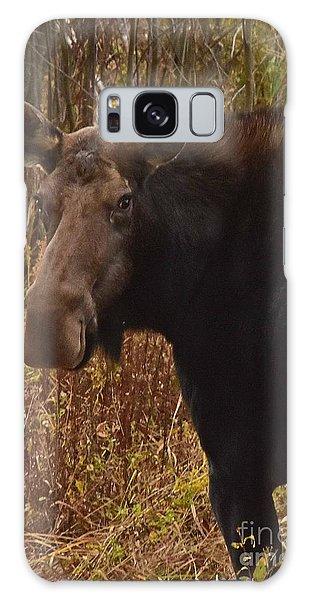 Moose Portrait Galaxy Case