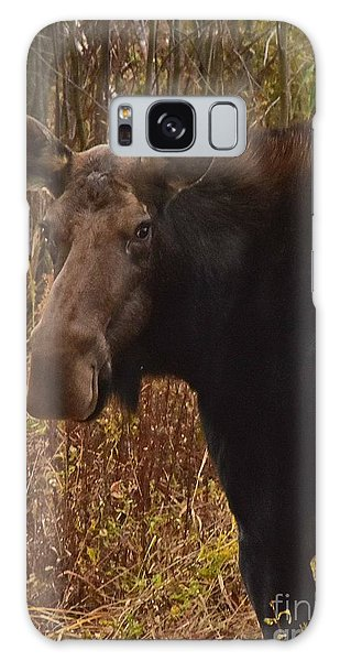 Moose Portrait Galaxy Case