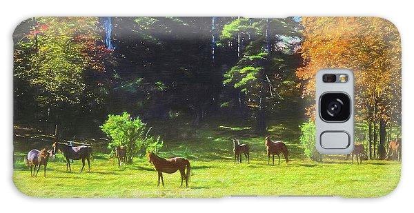 Morgan Horses In Autumn Pasture Galaxy Case