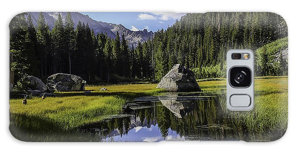 Morning At Grouse Meadow Galaxy Case