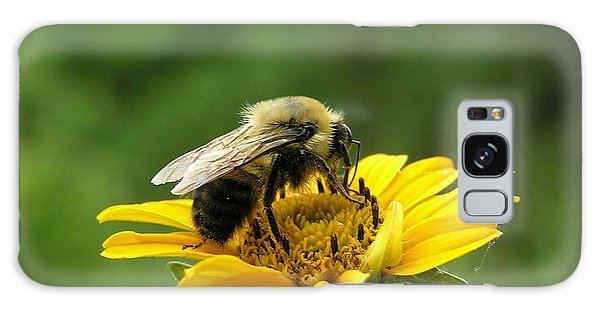 Morning Bee Galaxy Case