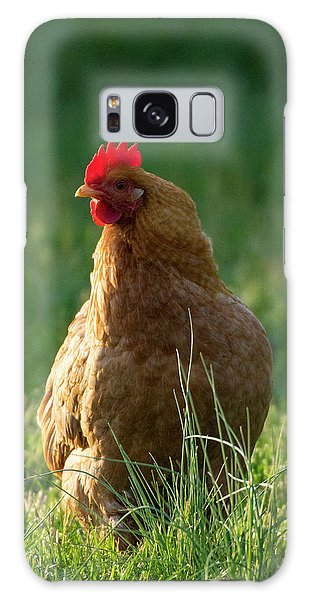 Morning Chicken Galaxy Case