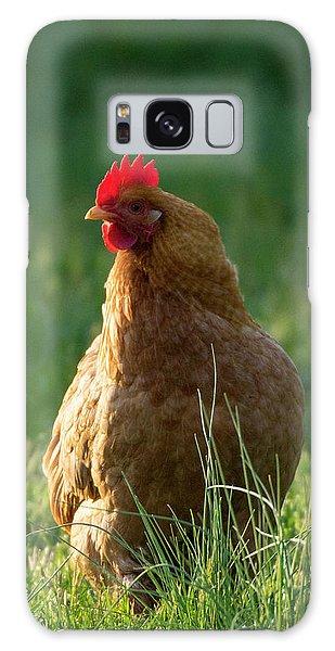 Morning Chicken Galaxy Case