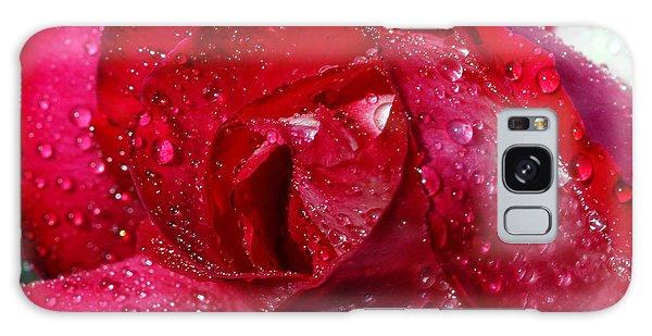 Morning Dew On Rose Galaxy Case