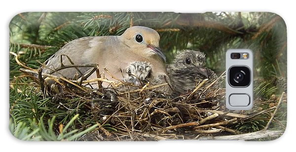 Morning Dove And Two Babys #2 Galaxy Case