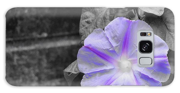 Morning Glory Flower Galaxy Case by Chad and Stacey Hall