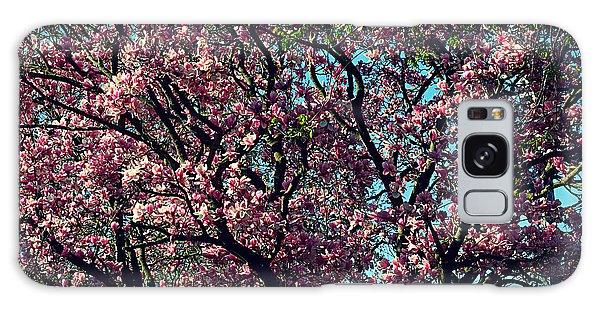 Morning Lit Magnolia Galaxy Case