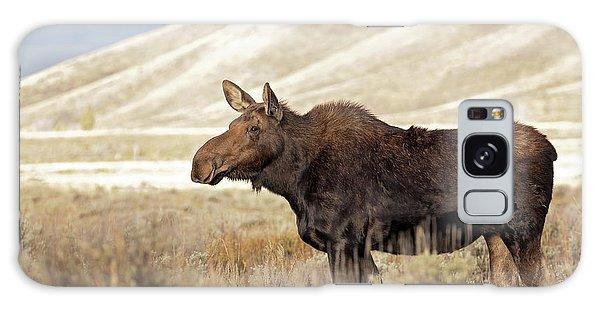Morning Moose Galaxy Case