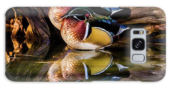 Morning Reflections - Wood Ducks Galaxy Case