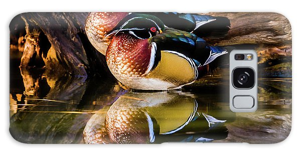 Morning Reflections - Wood Ducks Galaxy Case