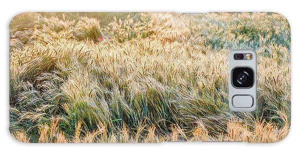 Morning Wheat Galaxy Case