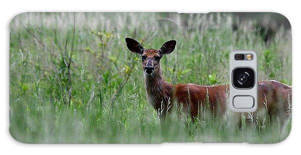 Morninng Deer Galaxy Case