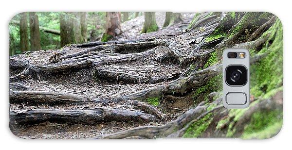 Moss Glen Falls - Vermont Galaxy Case