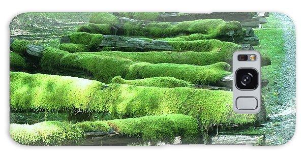 Mossy Fence Galaxy Case