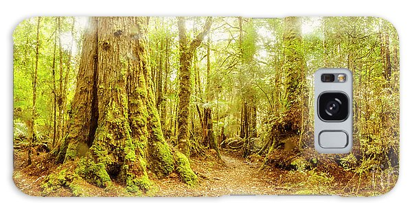 Philosopher Galaxy Case - Mossy Forest Trails by Jorgo Photography - Wall Art Gallery