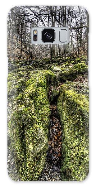 Mossy Trail Galaxy Case