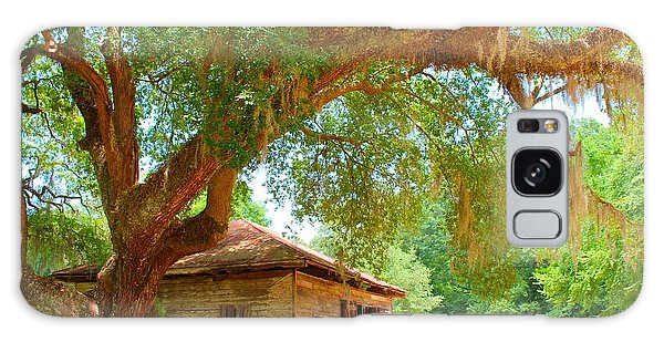 Mossy Tree In Natchez Galaxy Case