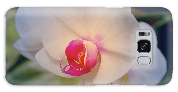 Galaxy Case featuring the photograph Moth Orchid 1 by Kate Word