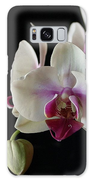 Moth Orchid 2 Galaxy Case by Marna Edwards Flavell