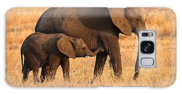 Mother And Baby Elephants Galaxy Case