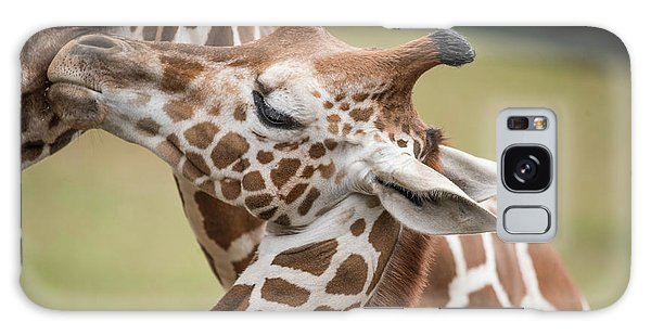 Mother And Baby Giraffes Galaxy Case