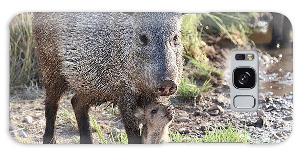 Mother And Baby Javelina Galaxy Case