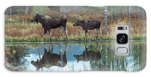 Mother And Baby Moose Reflection Galaxy Case by Rebecca Margraf
