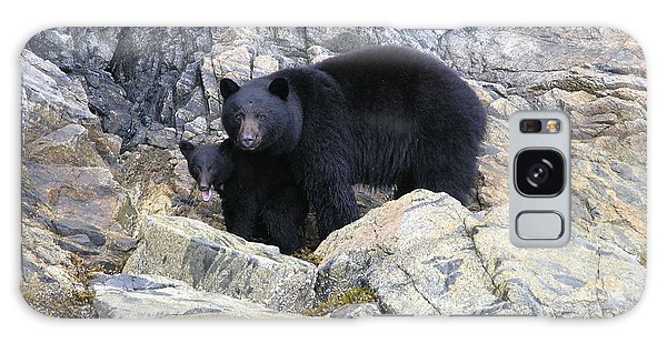 Mother Bear And Her Cub Galaxy Case