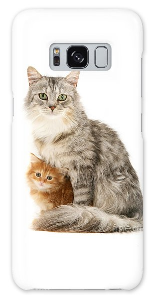 Mother Cat And Ginger Kitten Galaxy Case