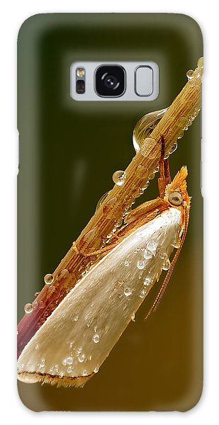 Mother-of-peal Moth Galaxy Case