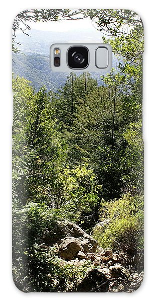 Mount Tamalpais Forest View Galaxy Case