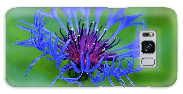 Mountain Cornflower Galaxy Case