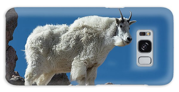 Galaxy Case featuring the photograph Mountain Goat 2 by Gary Lengyel