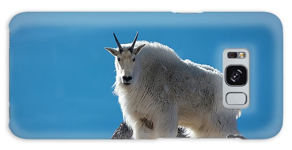Galaxy Case featuring the photograph Mountain Goat 3 by Gary Lengyel
