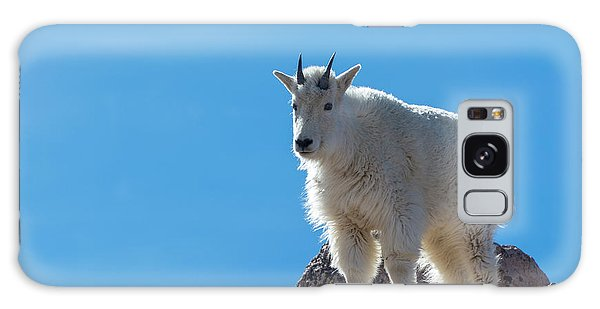 Galaxy Case featuring the photograph Mountain Goat 4 by Gary Lengyel