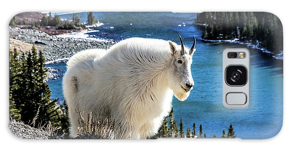 Mountain Goat At Lower Blue Lake Galaxy Case