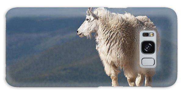 Mountain Goat Galaxy Case