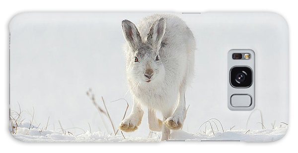 Mountain Hare Approaching Galaxy Case
