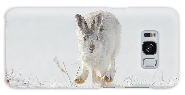 Mountain Hare Approaching Galaxy Case