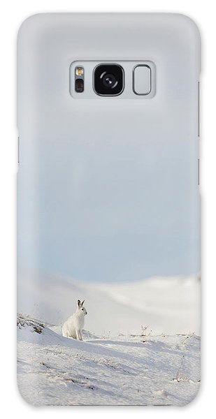 Mountain Hare On Hillside Galaxy Case