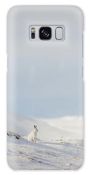 Mountain Hare On Hillside Galaxy Case