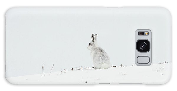 Mountain Hare Sat In Snow Galaxy Case