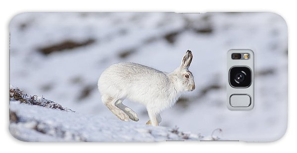 Mountain Hare - Scottish Highlands  #12 Galaxy Case