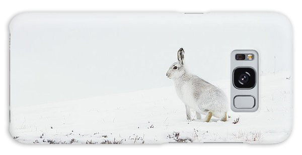Mountain Hare Side On Galaxy Case