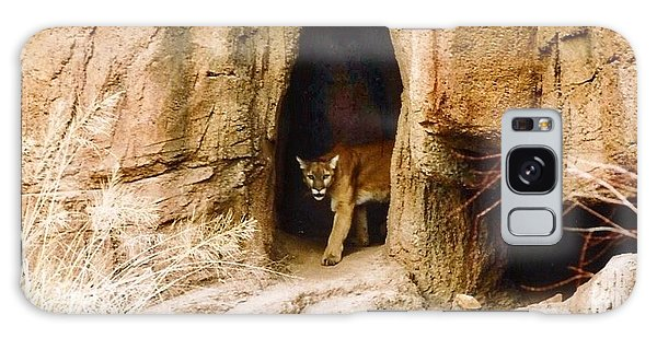 Mountain Lion In The Desert Galaxy Case