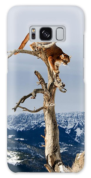 Mountain Lion In Tree Galaxy Case