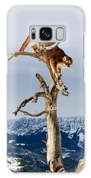 Mountain Lion In Tree Galaxy Case