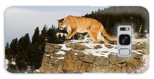 Mountain Lion On Rocks Galaxy Case