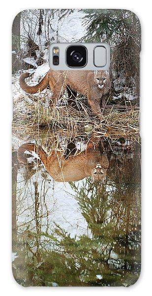 Mountain Lion Reflection Galaxy Case
