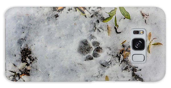 Mountain Lion Tracks In Snow Galaxy Case